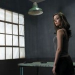 Sarah Connor Chronicles Gets Second Season