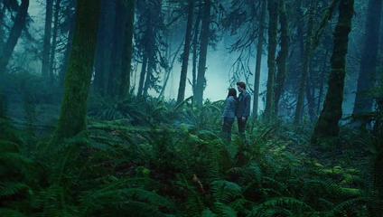 http://fandomania.com/wp-content/uploads/2009/03/forest.jpg