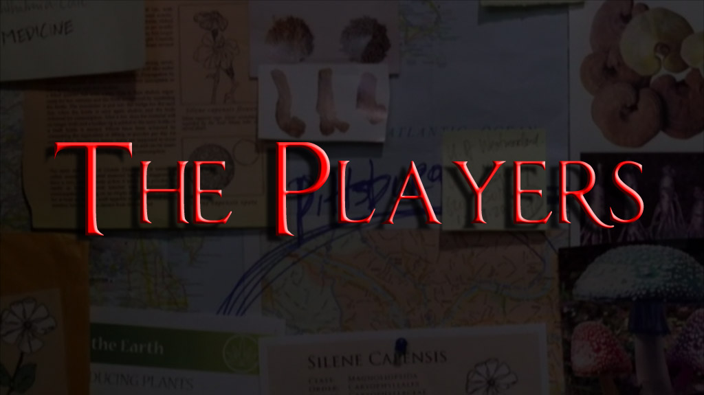 spn-the-players