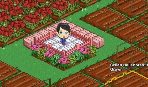 Me in my farm