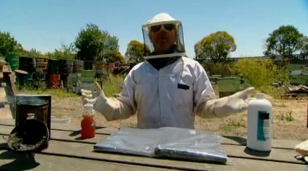 Tv Review Mythbusters 8 26 Bug Special Fandomania