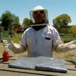 "TV Review: MythBusters 8.26 – ""Bug Special"""