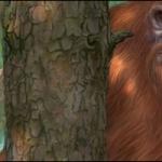 Fan Art Friday: Bigfoot
