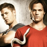 Supernatural: The Official Companion: Season 6 Book Review