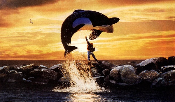 top-10-90s-kids-movie-dreams-free-willy
