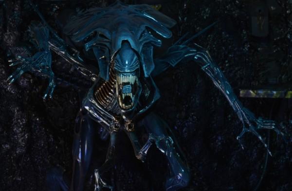 alienqueen13
