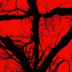 Contest: Win Blair Witch on Blu-ray and DVD!