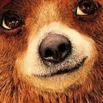 Contest: Win Paddington 2 on Blu-ray and DVD!