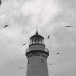 Contest: Win The Lighthouse on Blu-ray and Digital!