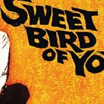 Contest: Win Sweet Bird of Youth on Blu-ray!