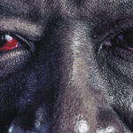 Contest: Win Fear the Walking Dead: The Complete Sixth Season on Blu-ray and Digital!