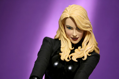 Cover Girls of DC Black Canary Statue 005