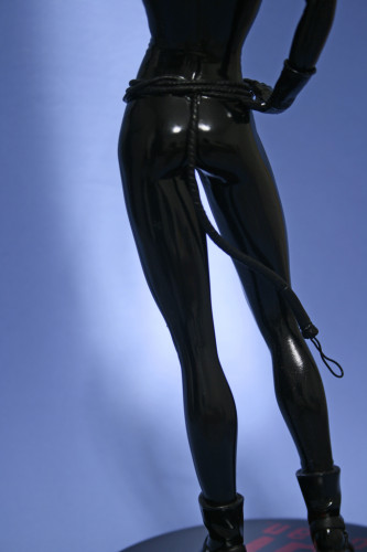 Cover Girls of DC Catwoman Statue 009